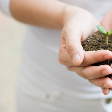 7 Ways to Celebrate Earth Day for Under $10