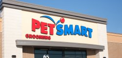 Major Mergers and Acquisitions In April: JAB Holding Buys Panera Bread, PetSmart Acquires Chewy.com