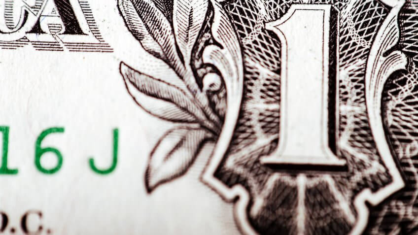 close up of US dollar bill spider