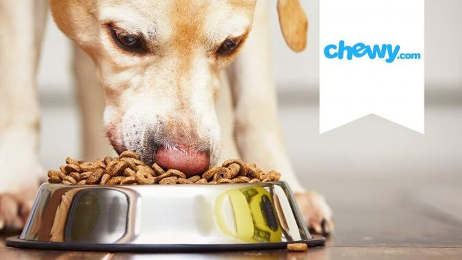Chewy.com Finds a Forever Home at PetSmart
