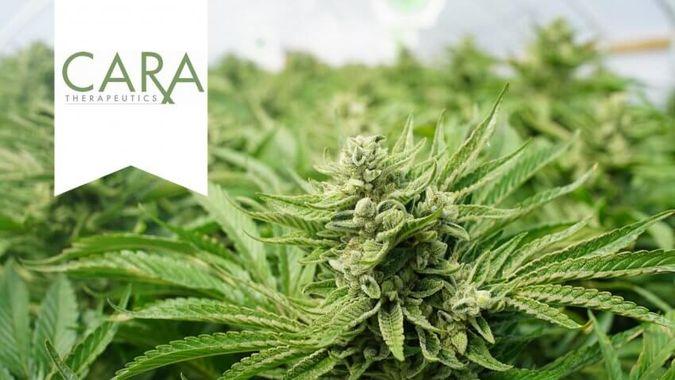 Cara Therapeutics: CARA