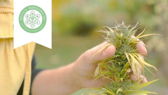 Medical Marijuana, Inc.: MJNA