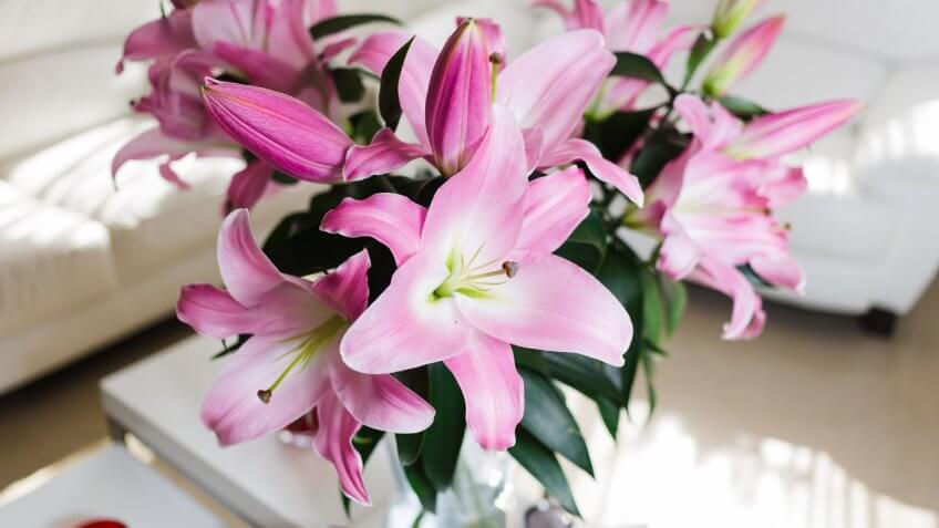 Flowers: $31.66
