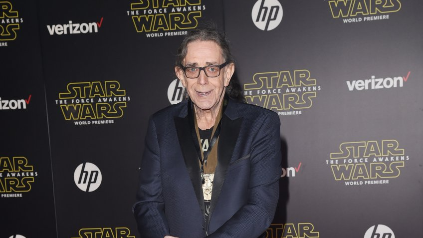 Peter Mayhew Net Worth: $500,000