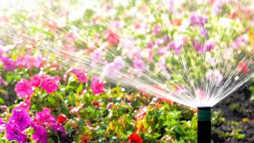 Watering Inefficiently