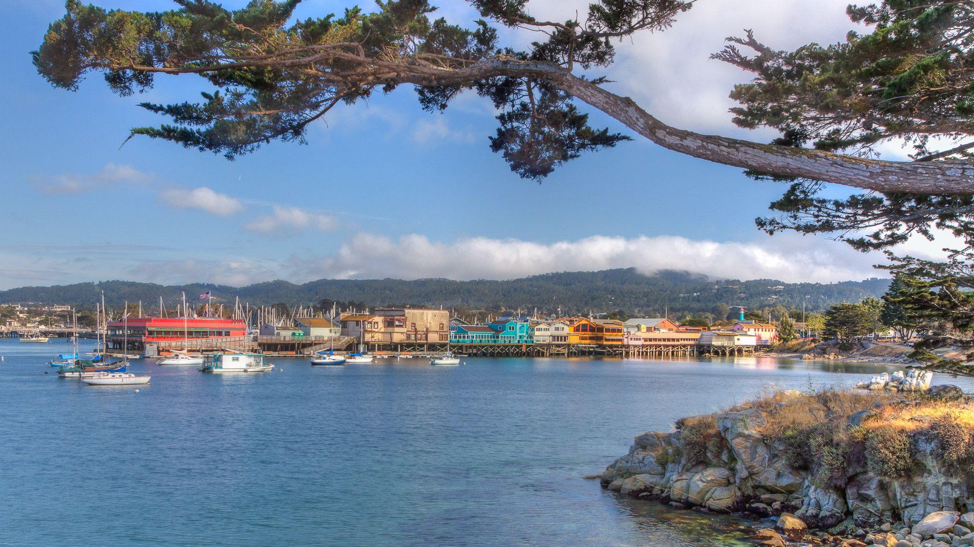 Monterey California seascape
