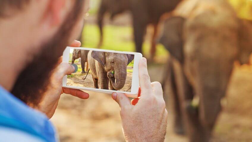 Balancing Paid and Organic Social Media