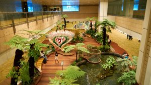The World's Best Airports for Cheap or Free Attractions