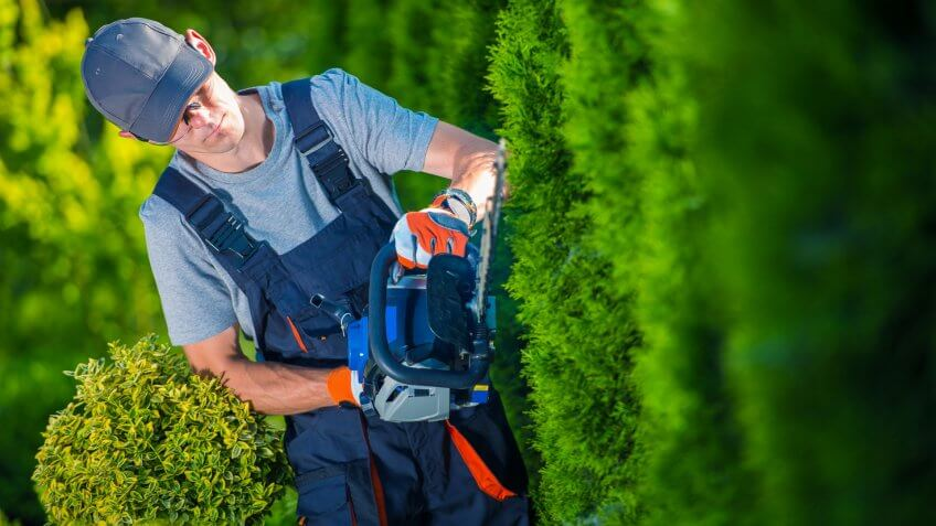 22 Industries That Pay Less (and More) Than They Did 10 Years Ag, Hedge Trimmer Works. Gardener with Gasoline Hedge Trimmer Shapin