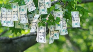 How to Find the Best High-Yield Savings Accounts