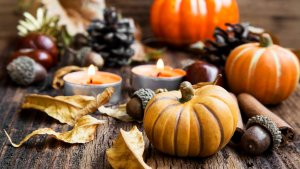 15 Perfect Fall Decorations for Under $10