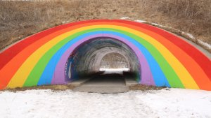 The Rainbow Tunnel and 15 Oddest Attractions That Are Free to Visit