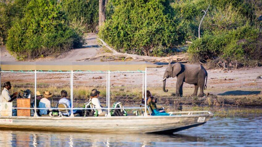 Tourist observe elephants in the edge of Chobe National Park, Botswana, Africa.