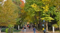What It Costs to Attend the Most Beautiful Colleges in America