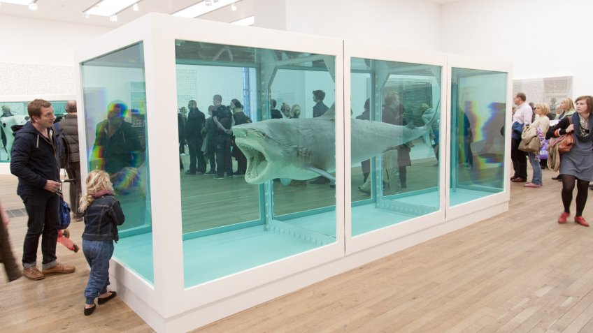 Steve Cohen's 14-foot Preserved Shark