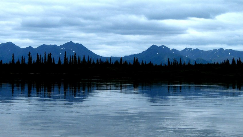 Blue sky, blue mountains, and blue water make the spruce trees and their reflection striking along the Kobuk River.