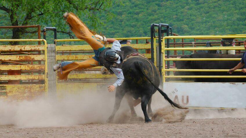 bull-rider-falling-off