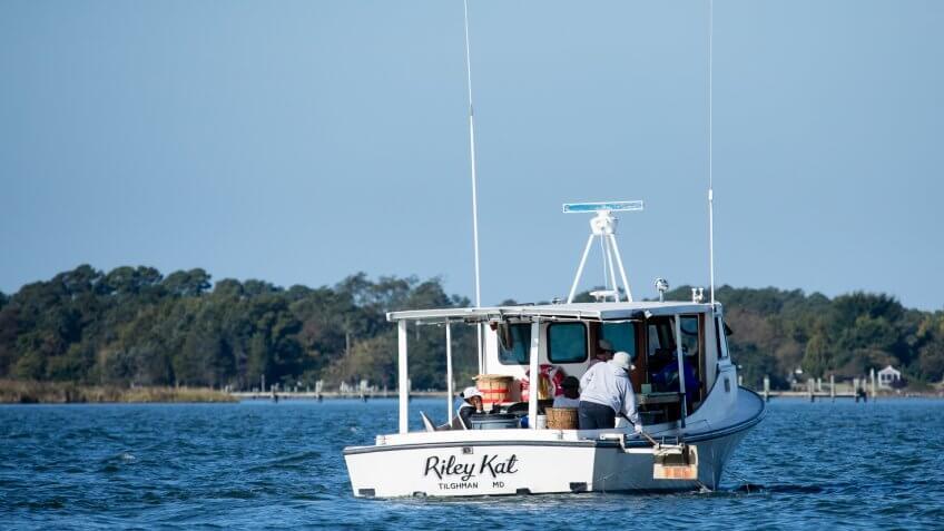 Business, Chesapeake Bay Program, Choptank River, Environment, Geography, Harris Creek, Maryland, States, Talbot County, Tilghman Island, Water Bodies, crabbing, fisheries, places, waterman, watermen