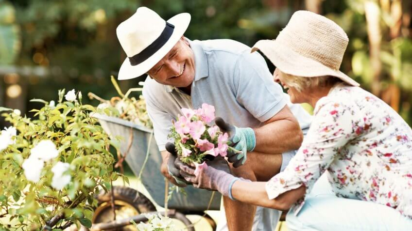 Shot of a smiling senior couple gardening in their yard.