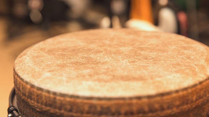 Head or skin of djembe drum.