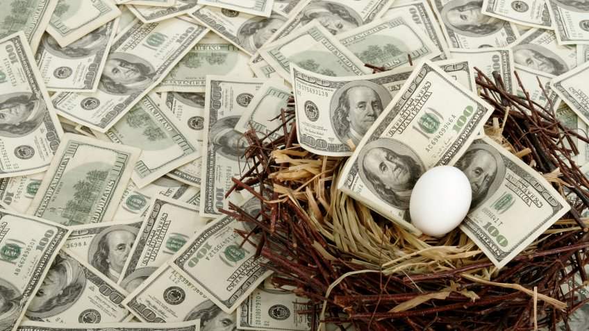 A single egg in a nest with $100 bills.
