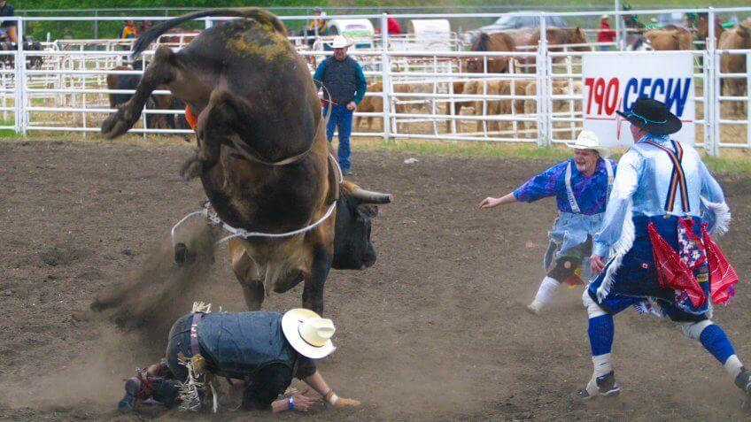 bull riderKEYWORDS:horizontal,editorial,rodeo,men,people,sport,outdoors,outside,dust,danger,animal,bull,rider,horns,tough,bull_fighters,clowns,hooves.