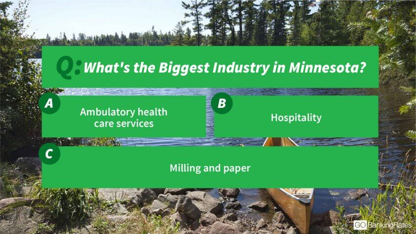 Minnesota industries
