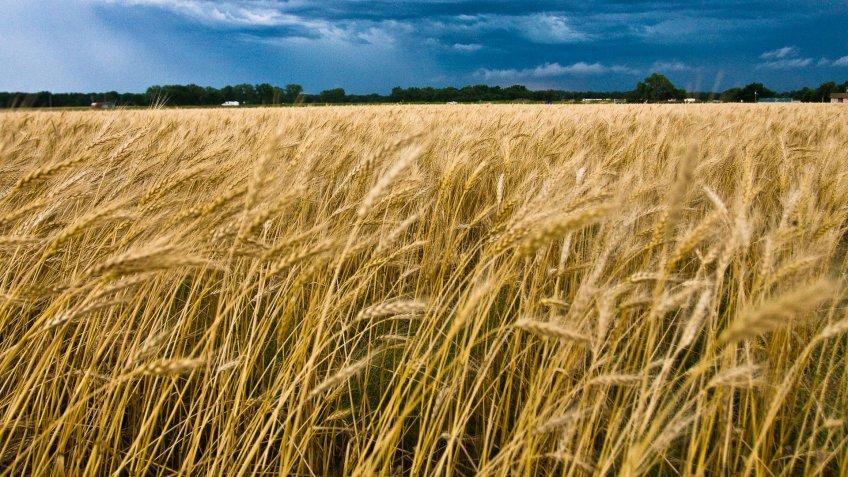 Oklahoma-agriculture