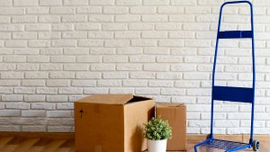 Best-Kept Moving Secrets Only Insiders Know