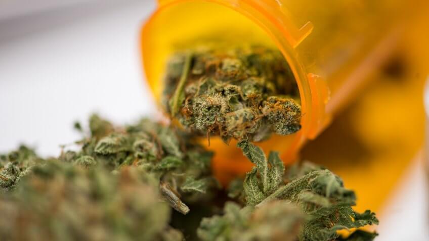 Closeup of medical marijuana bud flowers in a prescription pill bottle.