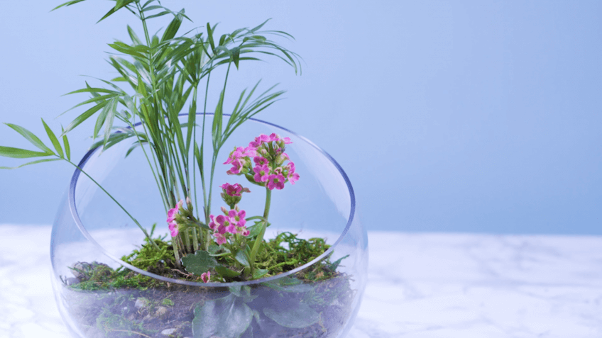 Check Out These 3 Easy DIY Projects to Welcome Spring to Your Home