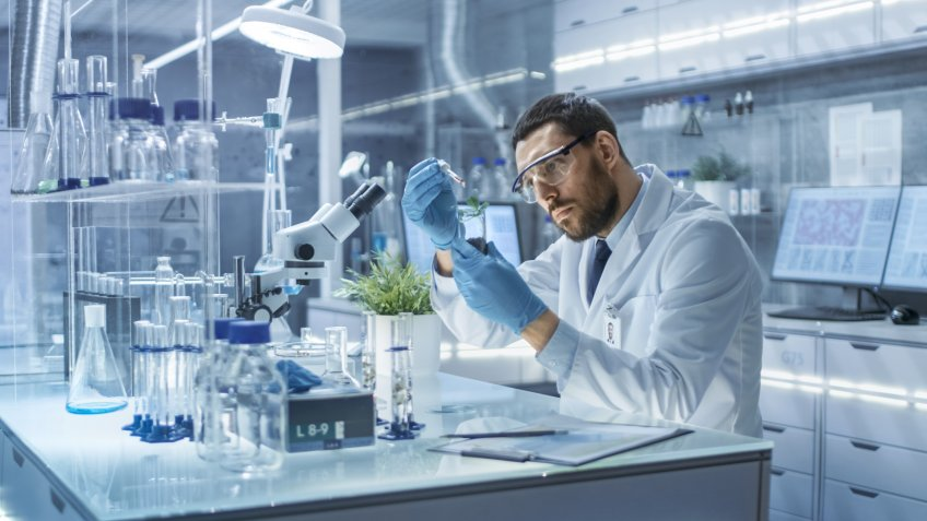 Stock, shares, NASDAQ, S&P 500, money, In a Modern Laboratory Research Scientist Conducts Experiments by Synthesising Compounds with use of Dropper and Plant in a Test Tube.
