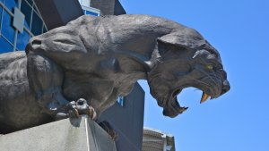 Meet the Billionaire Buying the Carolina Panthers