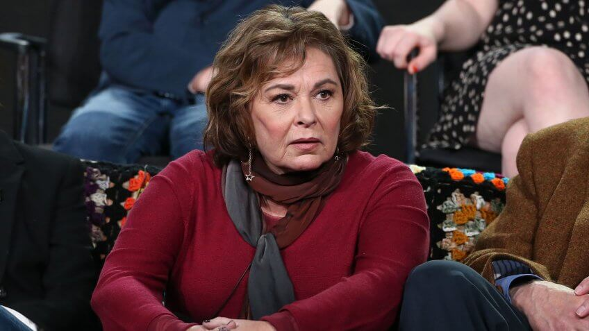 Mandatory Credit: Photo by David Buchan/Variety/REX/Shutterstock (9310212h)Roseanne BarrABC 'Roseanne' TV show panel, TCA Winter Press Tour, Los Angeles, USA - 08 Jan 2018.