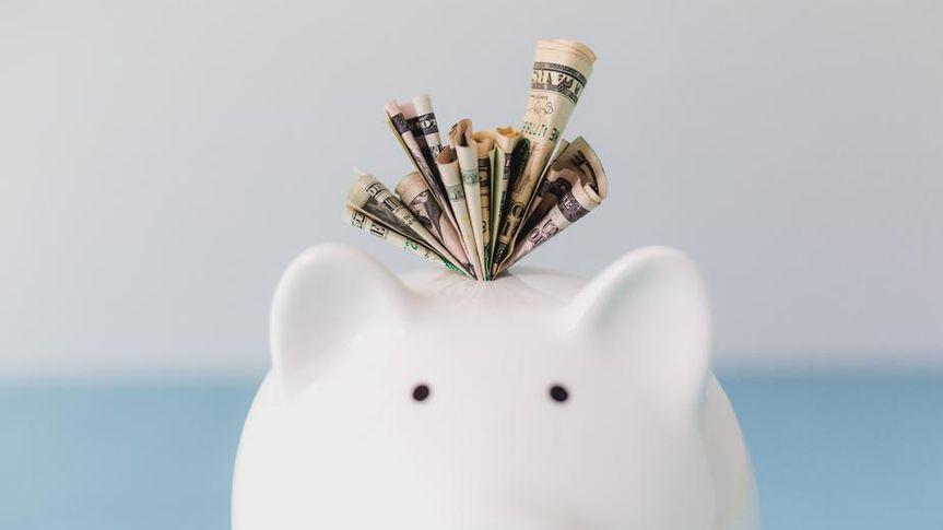 dollars in piggy bank.