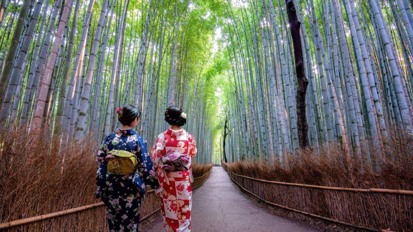 Arashiyama Bamboo Grove in Kyoto, Japan