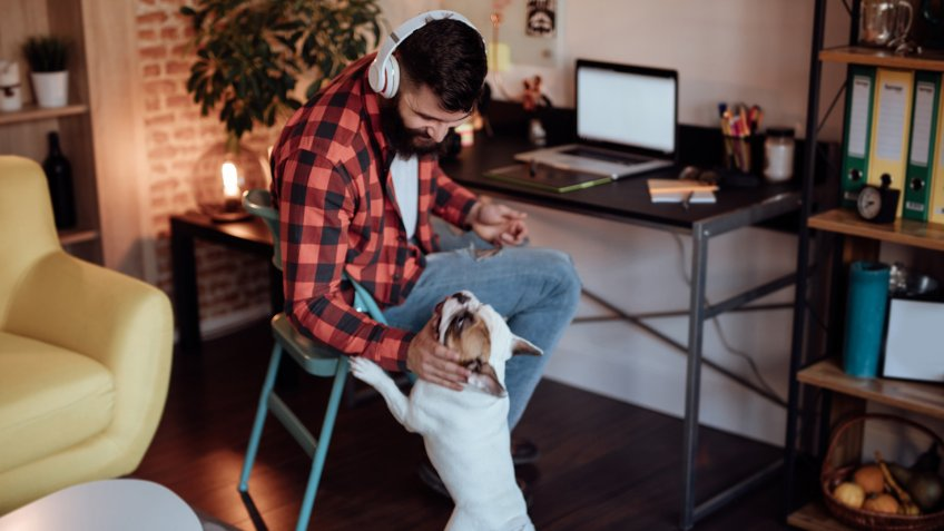 Freelancer working from home and playing with his dog.