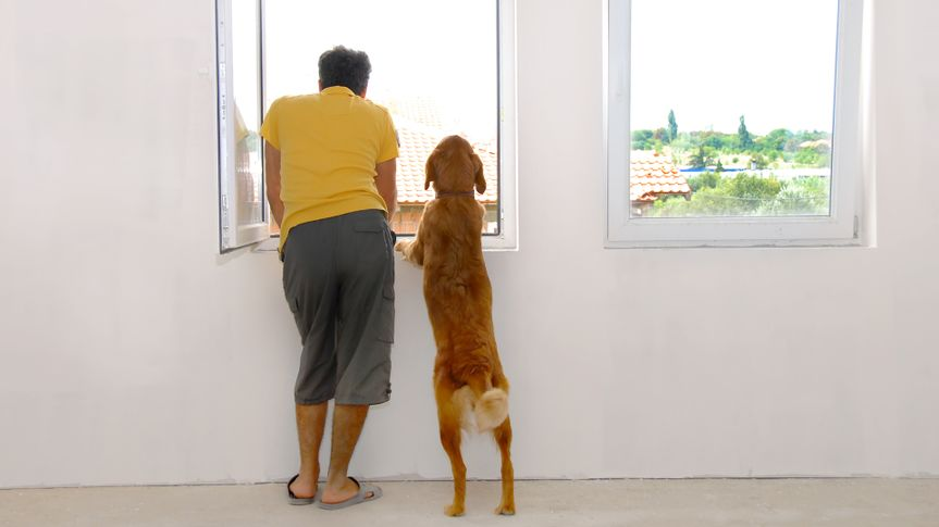man and his dog looking through window back view.