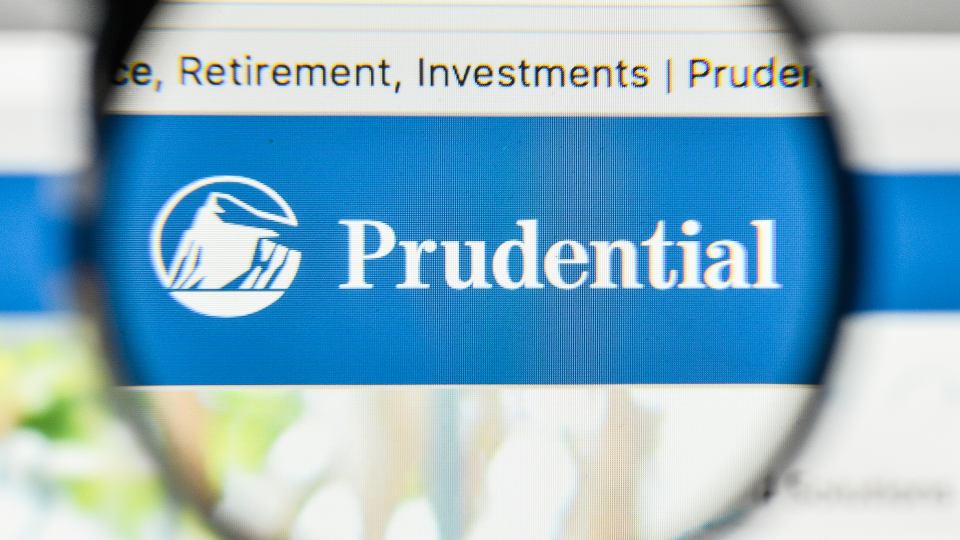 Prudential 401k investment options millennium global investment