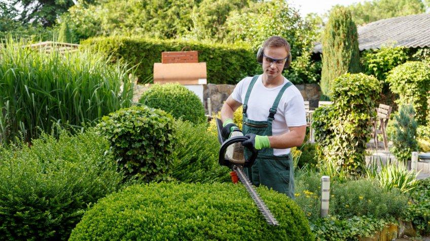 man using hedge trimmer on home landscape