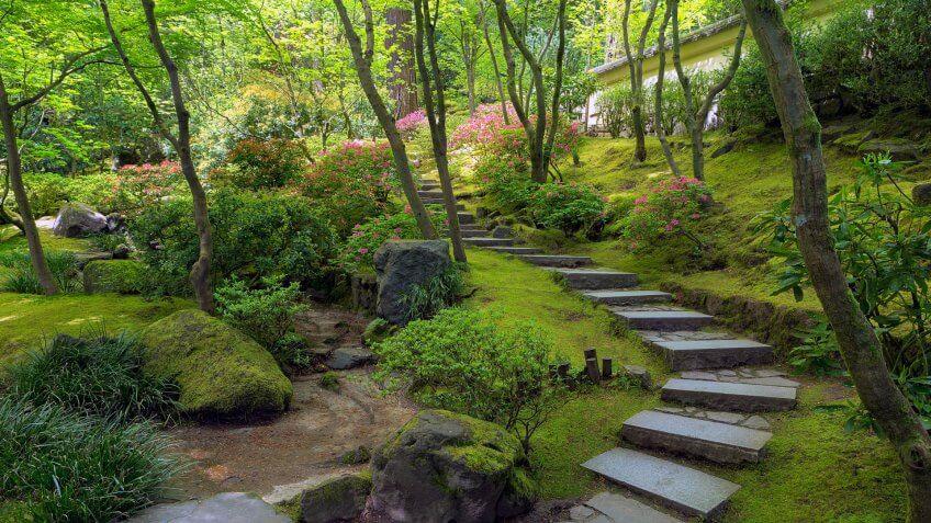 Stone Stair Steps at Portland Japanese Garden in Spring Season Oregon United States America.
