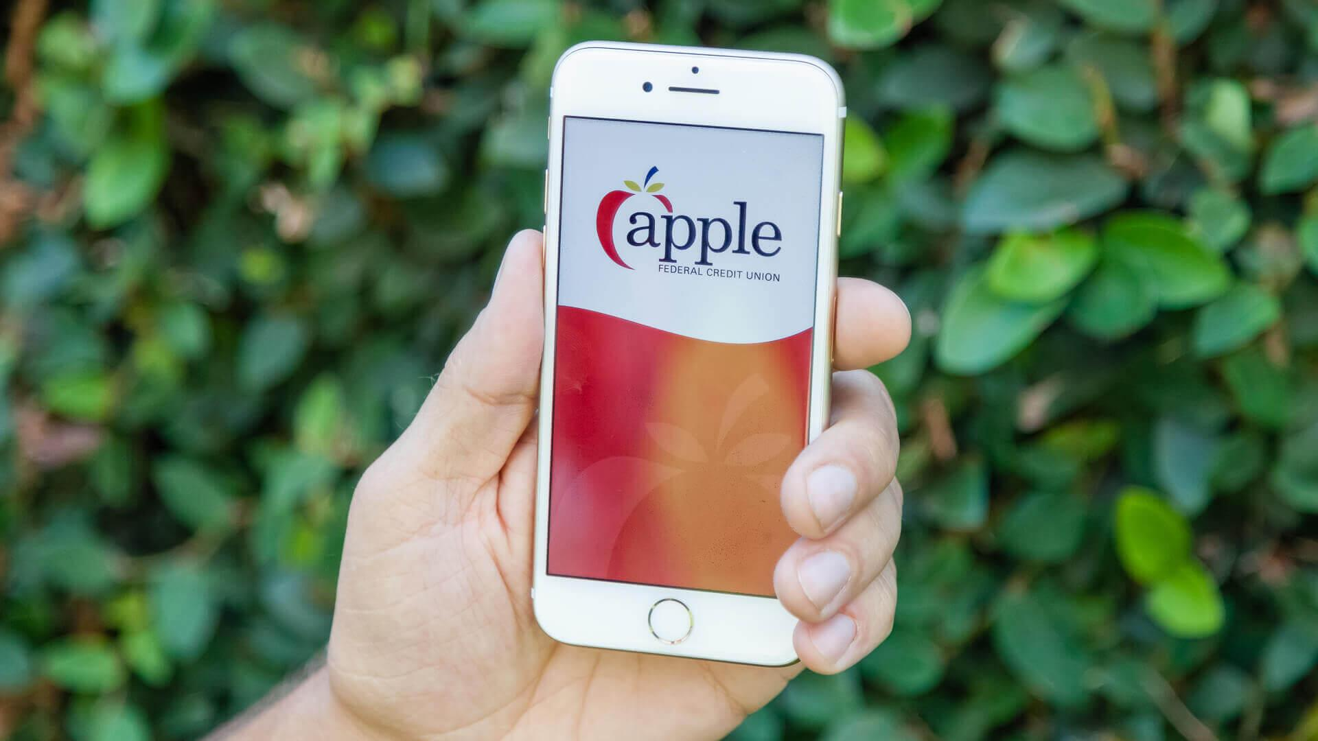 Apple Federal Credit Union Review.