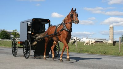 Amish Man Pioneers His Unique Version of Uber