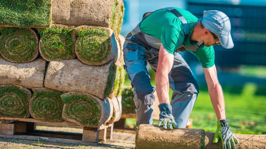 Natural Grass Turf Professional Installer.
