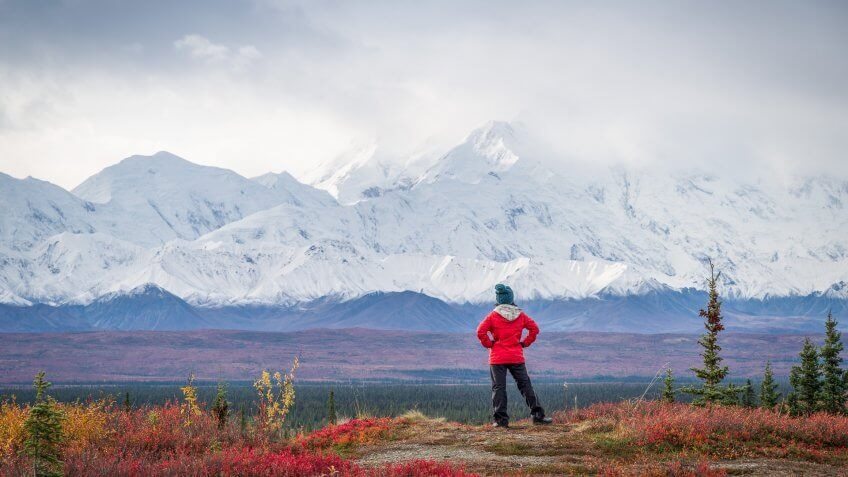 Hiker at mountain top with direct view of the Denali Mountain.