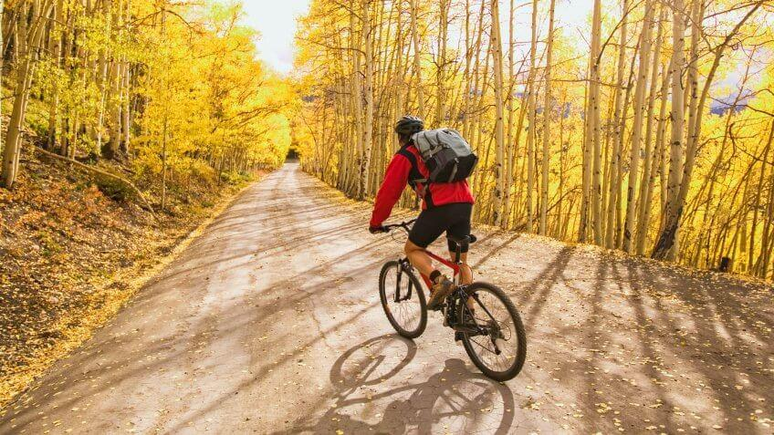 Mountain Biker with Backpack in Gold Autumn Aspens.