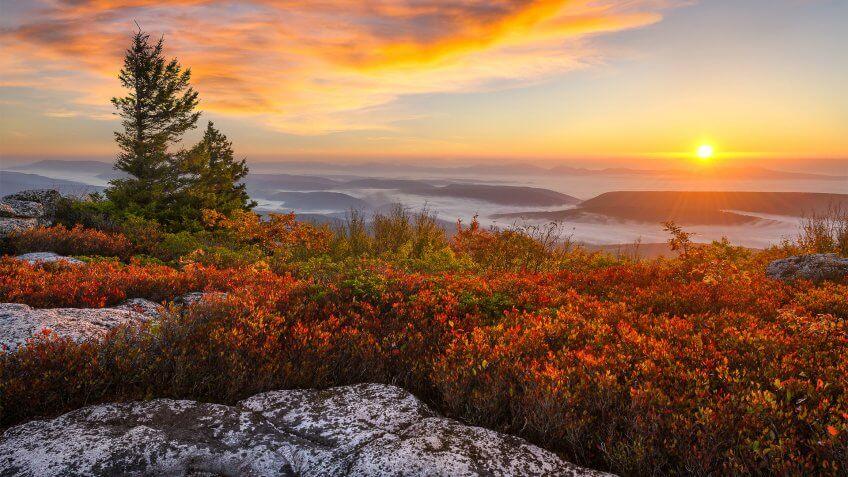 Dolly Sods Wilderness West Virginia
