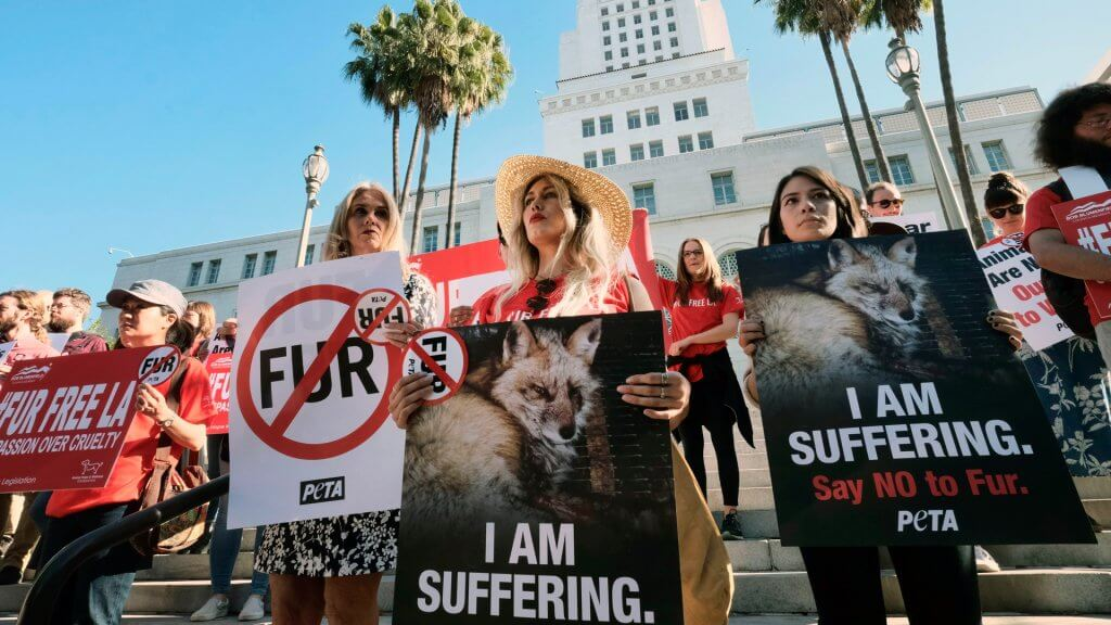 Fur Ban in Los Angeles shutterstock_editorial_9886161a_huge 1024x576
