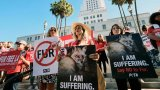 Los Angeles Makes Historic Move to Ban All Fur Products