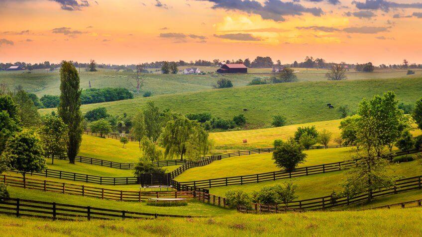 Beautiful evening scene in Kentucky's Bluegrass region.